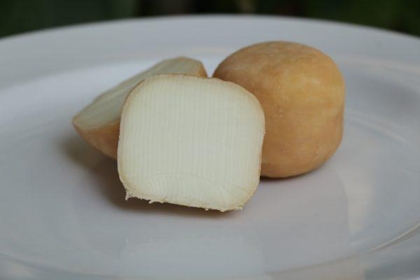 maja goat cheese