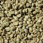 Coffee Green Robusta Arabica
